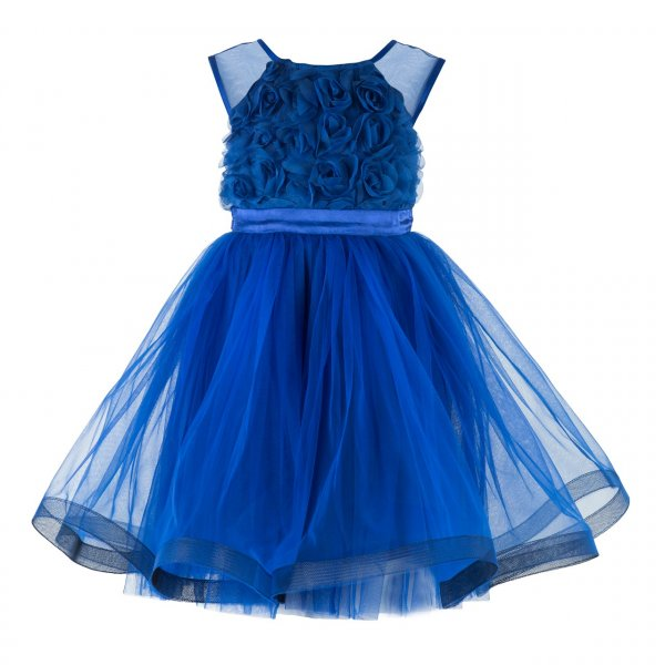 Blue Rosy Frock