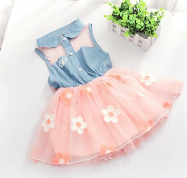 Denim Peach Net Dress