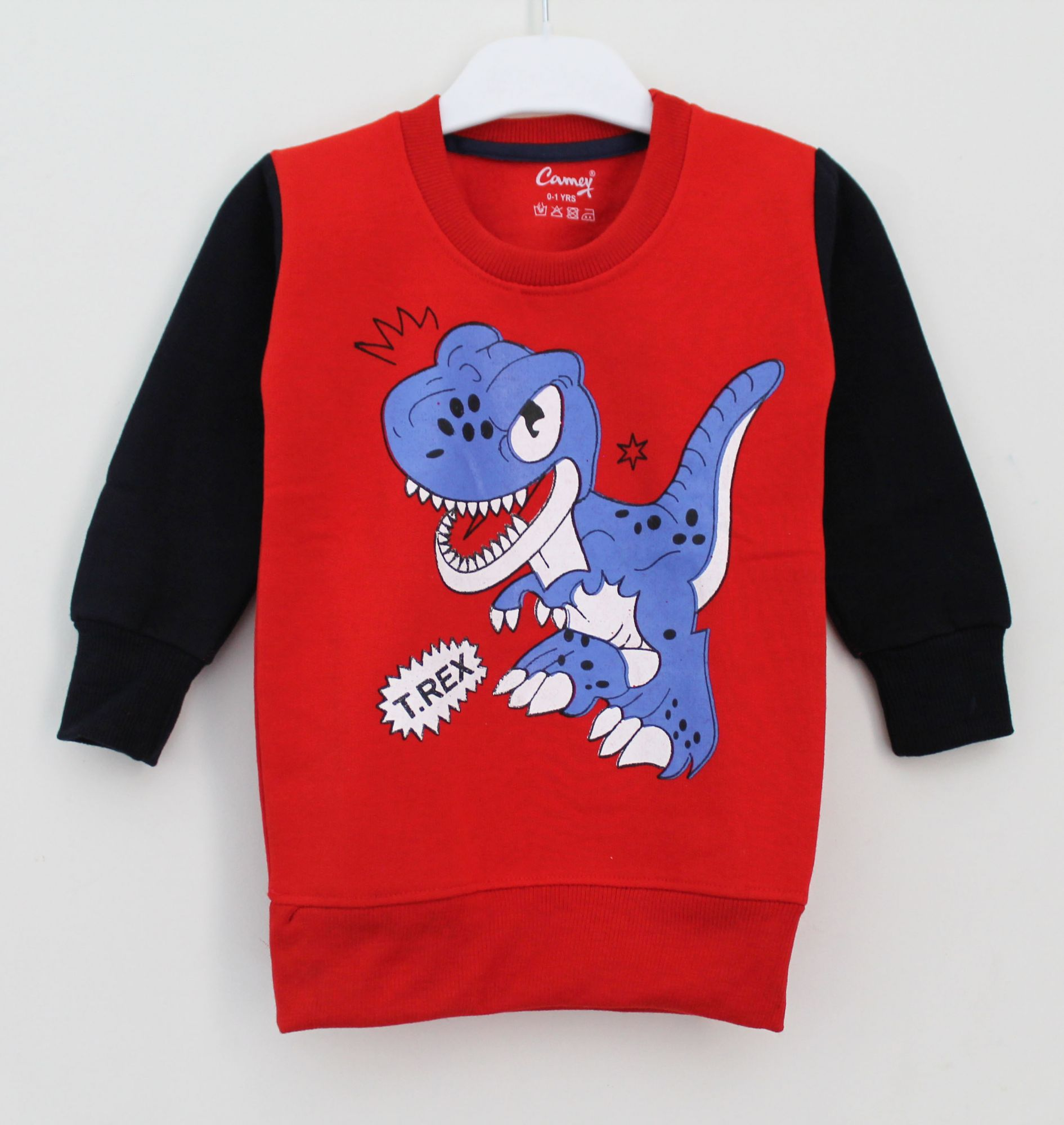 Dinasaur Sweatshirt for Kids