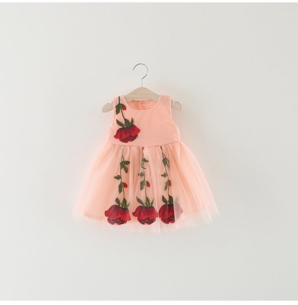 Peach Rose Elegant Frock